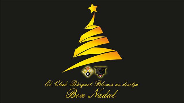 Bon Nadal web